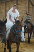 Psychiczne cechy  konia a dopasowanie do jeźdźca