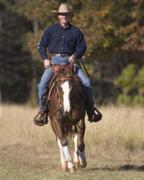 Pomona Equine Affair '05 (III) - Clinton Anderson - wywiad