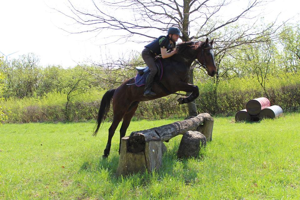 c72fca763a9e8 Wyjechałem do Anglii do pracy z końmi wyścigowymi Ellen Collinson, jak się  okazało na miejscu, zielarki oraz profesjonalnej equine iridologist.